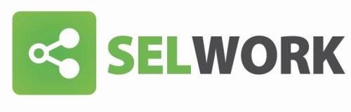 SELWORK Logo